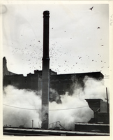 Birds Flew By, As A Part of the Old Wainwright Brewery Was Dynamited