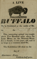 A Live Buffalo Broadside