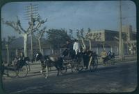 Hiller 09-015: Horse carriage and rickshaws on street in Nanking