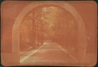 Hiller 09-043 : An archway in Nanking