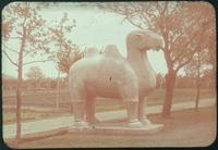 Hiller 09-061 : Standing camel statue on Elephant Road in Ming Xiaoling Mausoleum