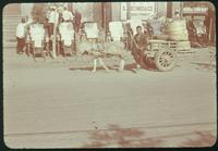 Hiller 08-026: Man with a donkey and cart in front of parked rickshaw carts