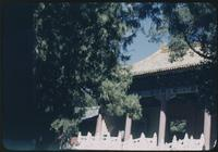 Hiller 08-104: Elaborate building hidden behind trees, Peiping