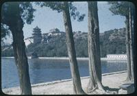 Hiller 08-128a: Beach view of tree-lined water, Peiping, number two