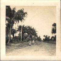 Three unidentified people walking down a road