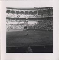 matador and several groundskeepers in a stadium
