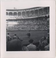 Three matadors and a bull in the arena of a large stadium