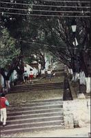 People walking up an outdoor stairway