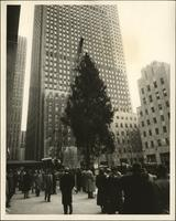 People watch as a crane lifts the Rockefeller Center's Christmas tree into place