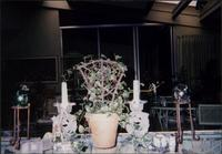 Decorative table setting and a small climbing ivy at Starr residence