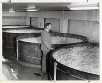 The Carling Brewery Company's Fermentation Cellar
