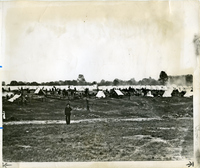 Jefferson Barracks - Camp Stephens Tent City 1898