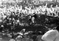 A Game at the Proctor and Gamble Picnic, 1952